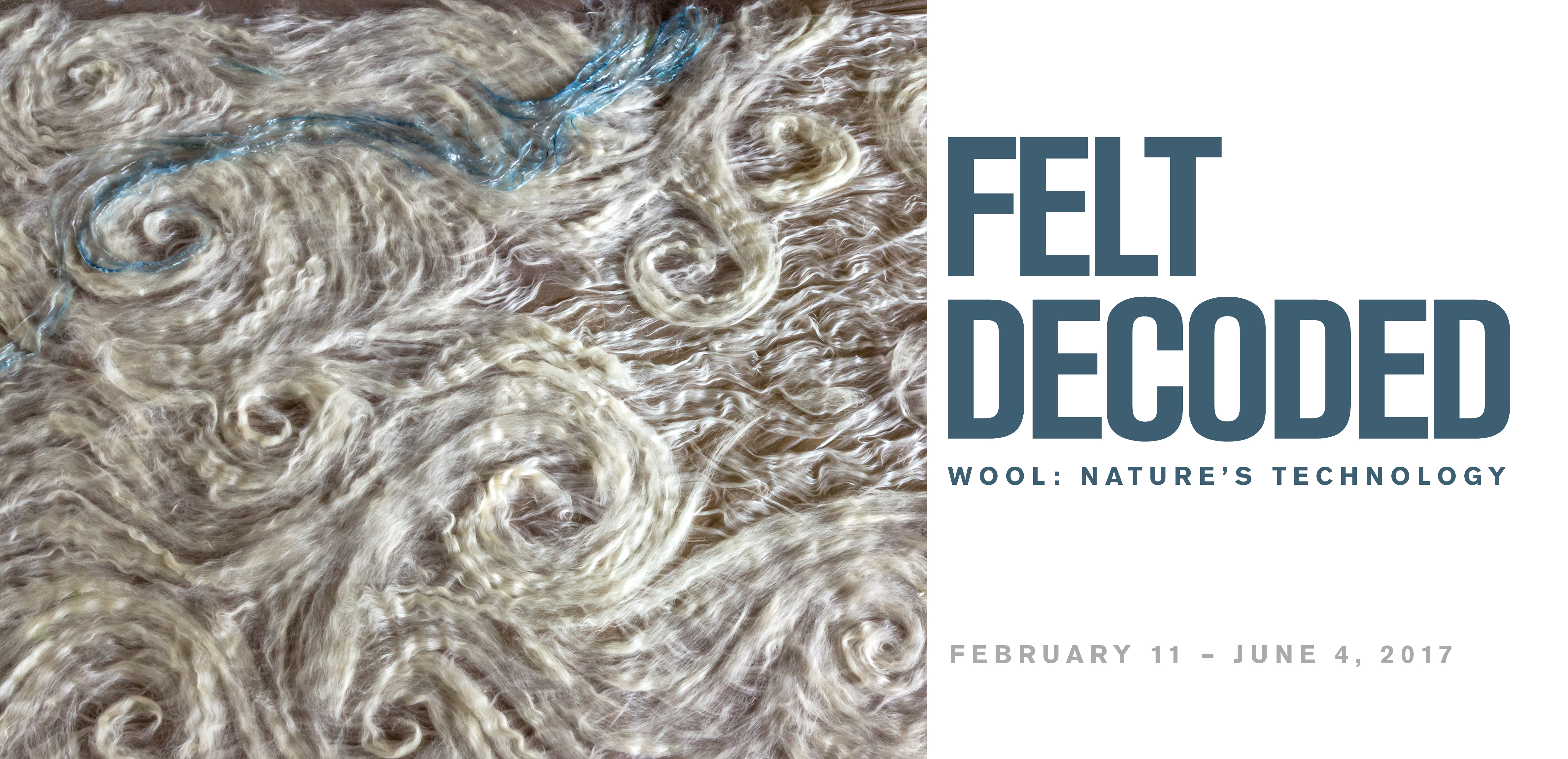 Felt Decoded by Janice Arnold