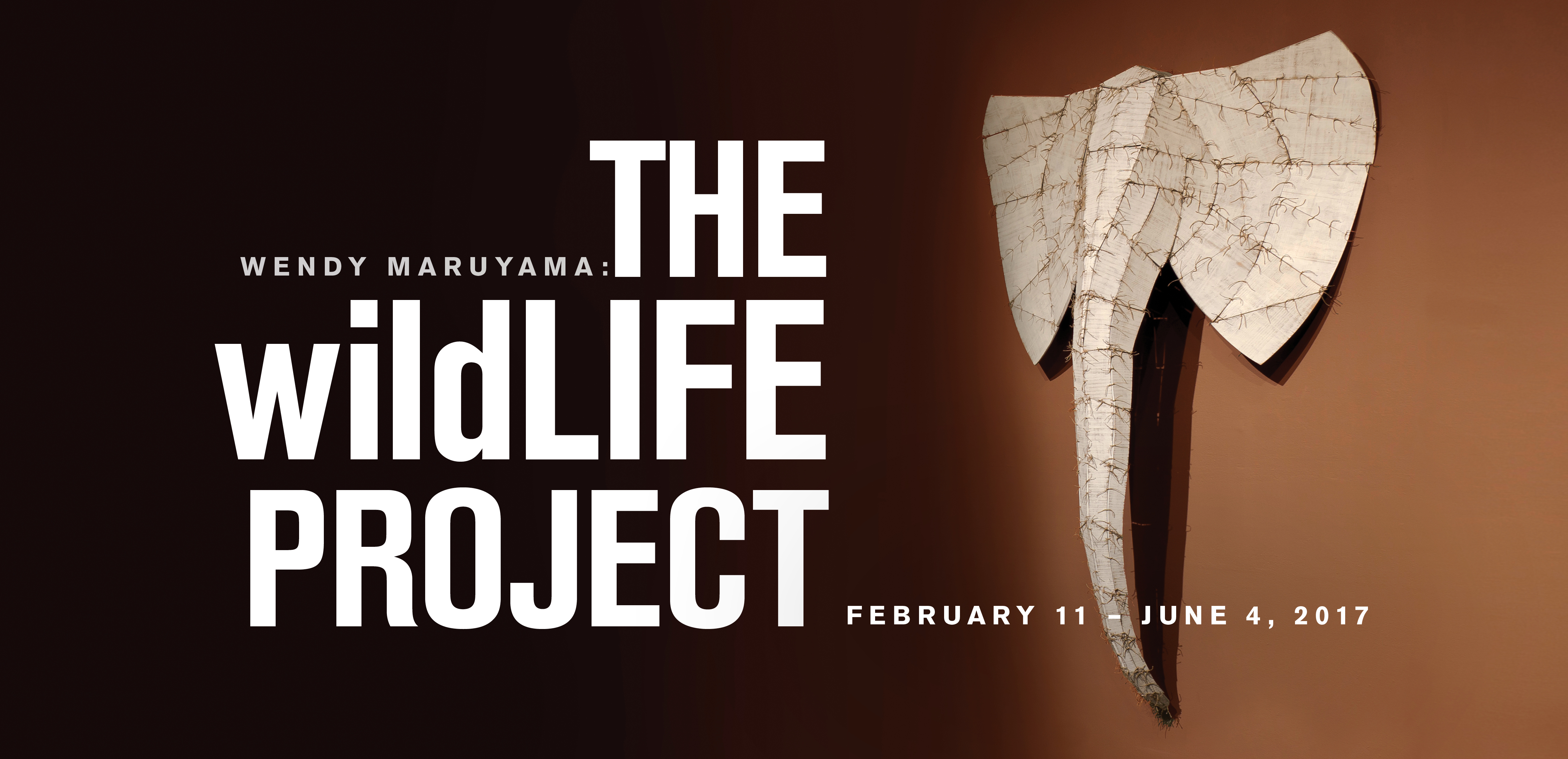 The wildLIFE Project