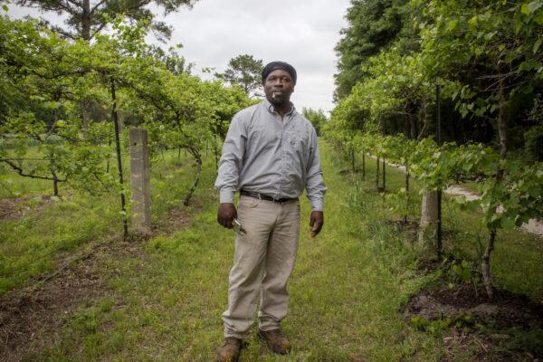 New Histories: The Gadsden Farm Project